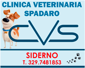 Clinica Veterinaria Spadaro